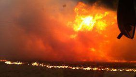 Kein Ende der Brände in Sicht: Australien leidet unter Rekord-Hitze