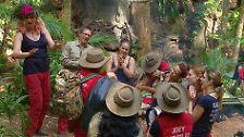 Klaus Baumgart verlässt den Dschungel, die Zuschauer haben ihn rausgewählt.