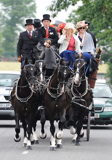 Wer beim königlichen Pferderennen im englischen Ascot wirklich auffallen will, ...