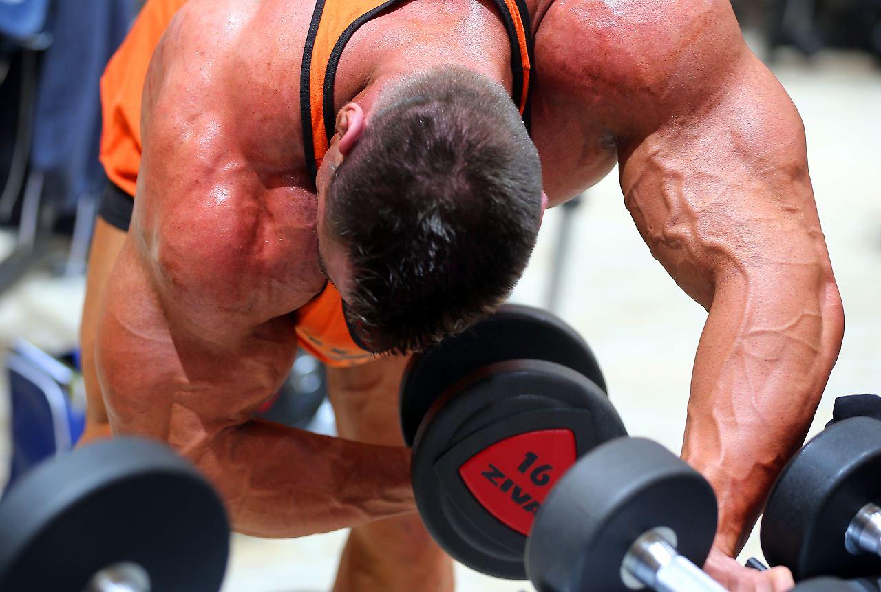 fett muskeln gewicht