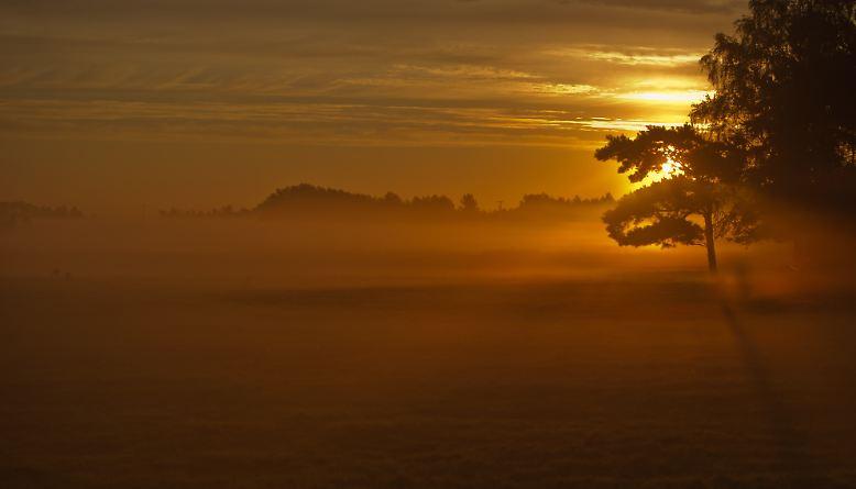Nebel hat viele Gesichter: er legt einen zarten Schleier über Landschaften und erzeugt so eine romantische Stimmung, ...