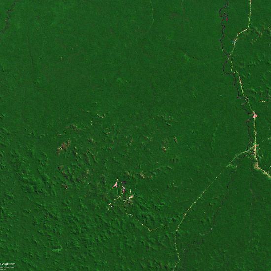 Sattes Grün: Das ist der Regenwald in einem Amazonas-Gebiet im Jahr 1975.