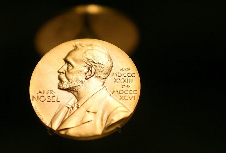 Der Nobelpreis ist die höchste Auszeichnung in der Welt der Wissenschaften. Jedes Jahr wird er in verschiedenen Kategorien vergeben.
