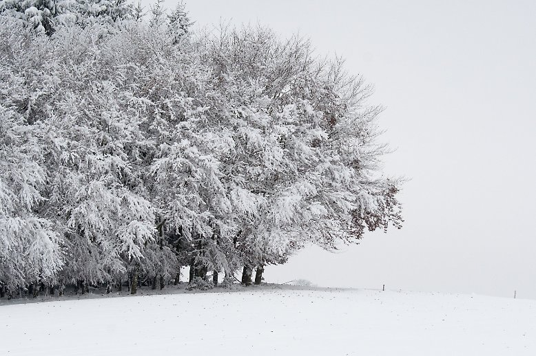 Schnee in Bayern ...