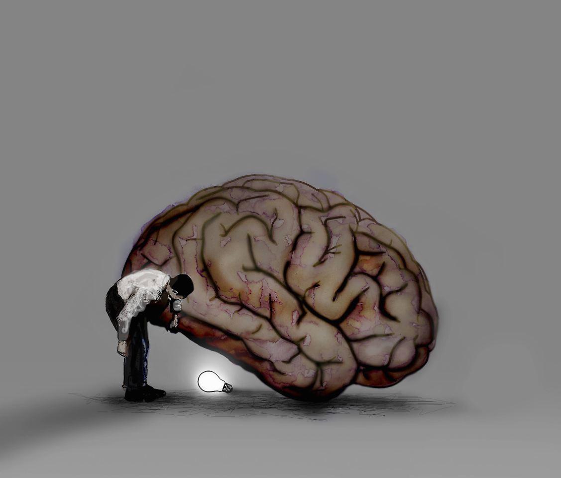 Intelligenz im Gehirn sichtbar: Kluge Menschen sind anders vernetzt ...