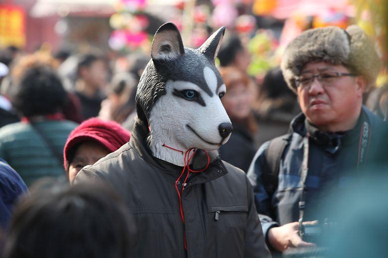 """... das """"Jahr des Hundes"""". Die Feierlichkeiten dazu dauern zwei Wochen und enden mit dem Laternenfest am 15. Tag. Die chinesischen Tierkreiszeichen ..."""