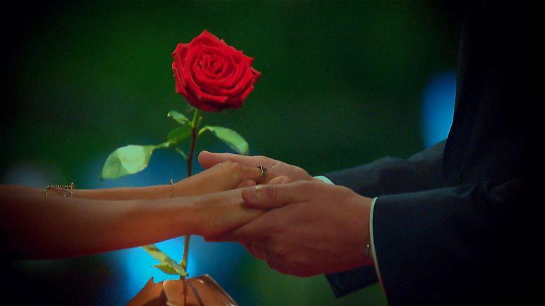 """Der """"Bachelor"""" hat gerade erst seine letzte Rose vergeben und wir haben uns immer schon gefragt: Was ist eigentlich ..."""