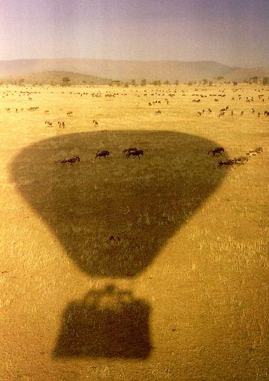 Als der US-amerikanische Jäger Stewart Edward White im Jahr 1913, als weite Teile Afrikas noch unerforscht waren, die Serengeti entdeckte, ...