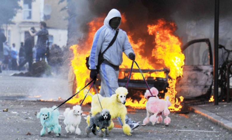 Es ist eine sehr britische Art, auf die Zerstörung in den Städten Englands zu reagieren.