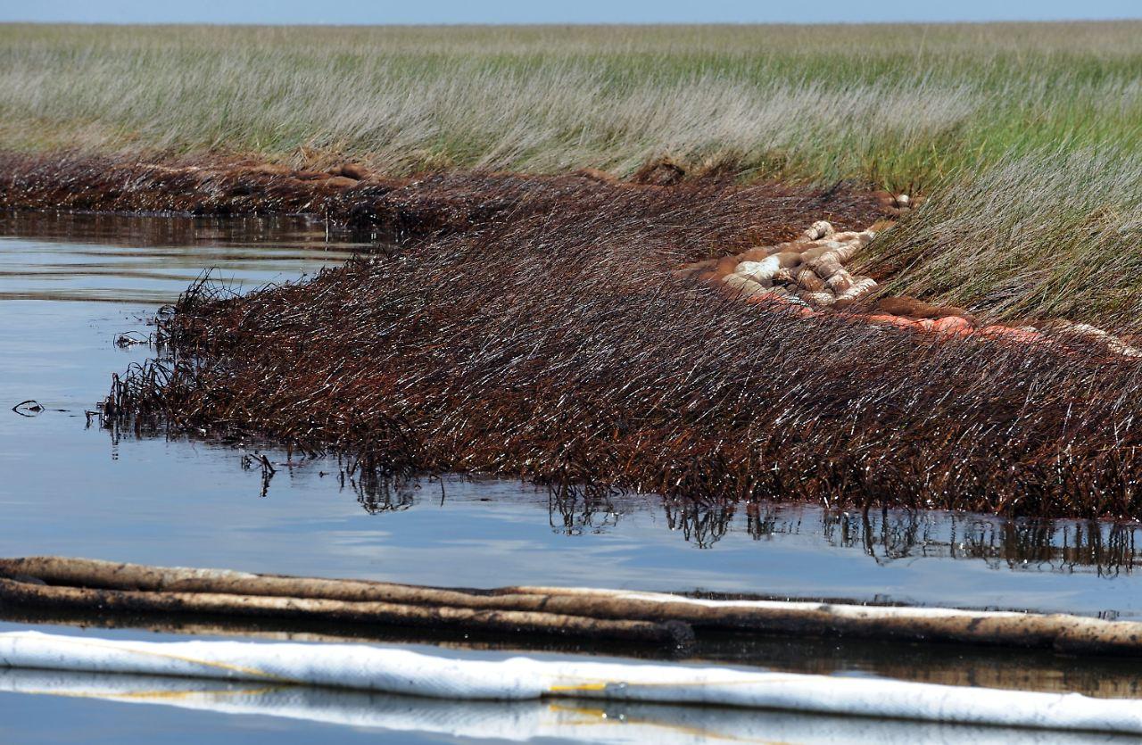 Schwarzer Tod - Ölunfälle und ihre Folgen. Torrey Canyon, Der für BP fahrende Tanker lief vor der Küste von Cornwall aufgrund eines Navigationsfehlers auf ein Riff, Tonnen Rohöl liefen aus und verschmutzten km englische und 80 km französische Küste.