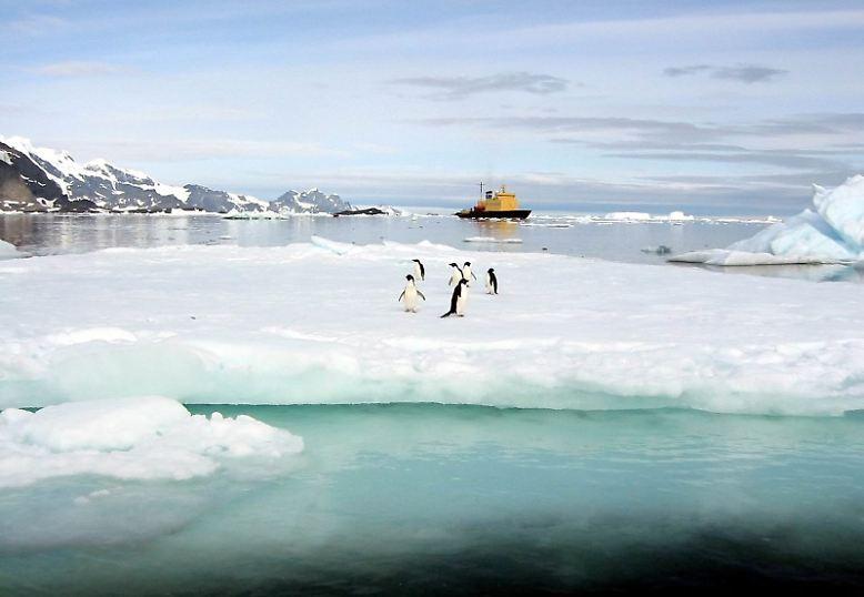 Doch Einsatzgebiete für Eisbrecher bleiben bestehen.