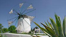 """""""Historische Wind- und Wassermühlen prägen seit Jahrthunderten unsere Landschaft"""", heißt es zum Beispiel in einer Festschrift des Internationalen Mühlenmuseums Gifhorn (Bild)."""